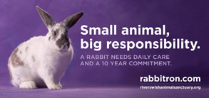 Small animal, big responsibility